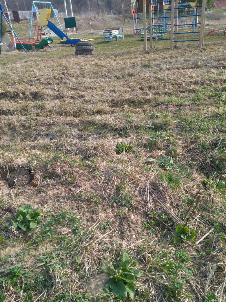 Обустройство спортивной площадки в деревне Иньшино Муниципального образования город Алексин