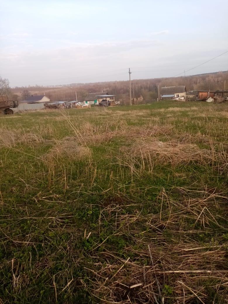 Обустройство спортивной площадки в Плавском районе деревни Ивановское-1 на улице Центральная